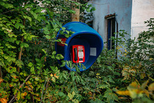 Old Abandoned Overgrown Phone ...