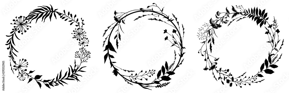 Fototapeta Set of circle floral frame with black silhouettes of meadow herbs. Floral wreaths. Element design. Vector illustration.