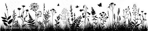 Background with black silhouettes of meadow wild herbs and flowers. Wildflowers. Floral background. Wild grass. Vector illustration. - 291357702