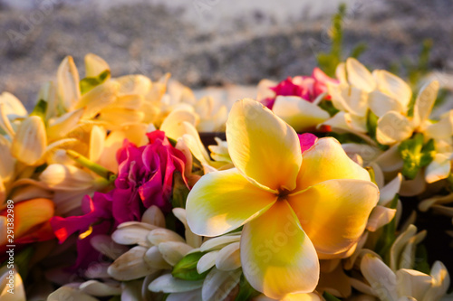 Fotografia  Close-up of a lei of tropical exotic flowers above a sandy beach  in French Poly