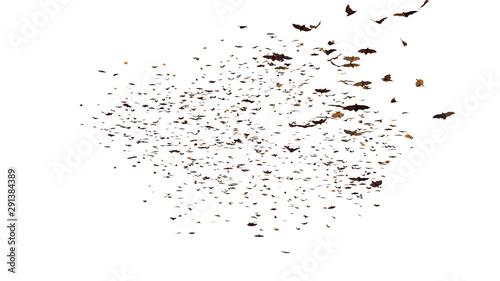 Leinwand Poster large group of flying foxes, mega bats isolated on white background