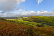 Ferns Turned Brown By Winter Overlooking View To Yorkshire Dales