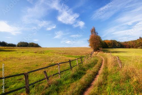 Montage in der Fensternische Honig rural landscape with field and blue sky, wuppertal ronsdorf, nrw germany