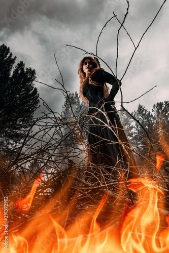 Obraz na plátne burning witches at stake