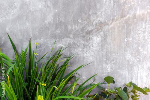 Cuadros en Lienzo outdoor wall in modern with concrete blocks and vertical garden