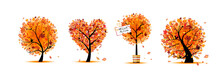 Autumn Trees Collection For Yo...