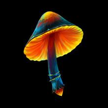 Digital Painted Mushroom. Mode...