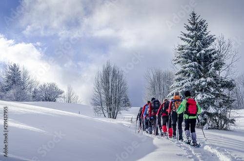 Fényképezés Raquettes à neige en groupe