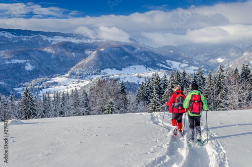Raquettes en duo et paysage de neige en Chartreuse Wallpaper Mural