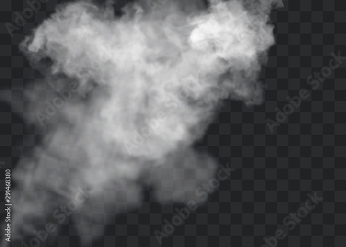 Türaufkleber Rauch Transparent special effect stands out with fog or smoke. White cloud vector, fog or smog.