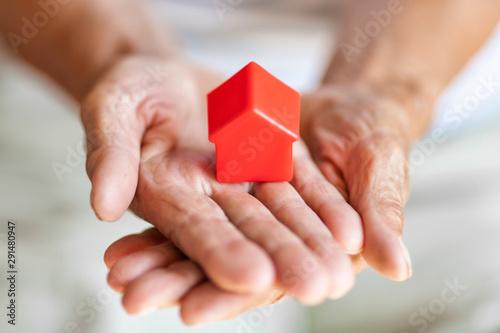 Cuadros en Lienzo  Elderly woman and her property