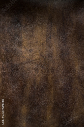 Obraz na plátne  fond vertical texture cuir marron