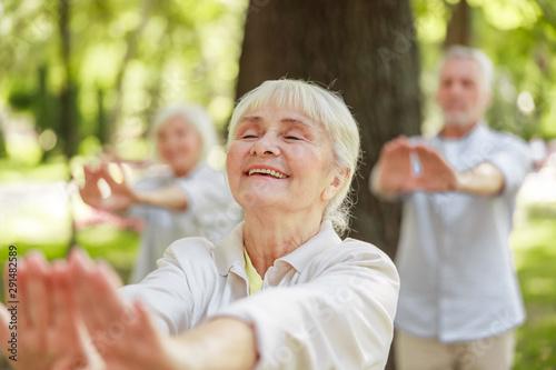 Cuadros en Lienzo  Happy senior lady practicing chi kung outdoors