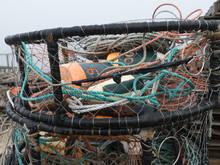 West Coast Crab Traps