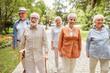 Leinwandbild Motiv Joyful old people walking on the street