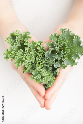 Photo  Kale Leaves in hands - negative space