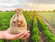 canvas print picture - The farmer holds a money bag on the background of plantations. Lending and subsidizing farmers. Grants and support. Profit from agribusiness. Land value and rent. Taxes taxation. Agricultural startups