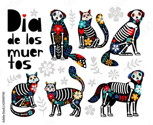 Mexican dead animals Canvas Print