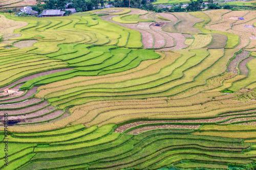 Fotobehang Rijstvelden Green terraces rice field at Mu Cang Chai