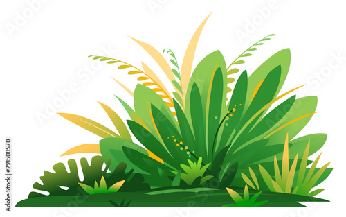 Obraz Decorative small composition of jungle plants on ground, group of green plants on the sunny lawn isolated, dense vegetation of the jungle - fototapety do salonu