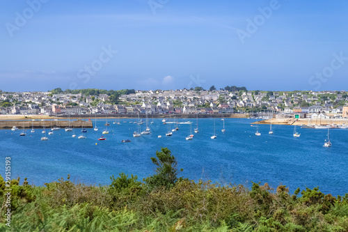 Canvas Prints New Zealand Camaret-sur-Mer, panorama of the harbor with typical houses and boats, the chapel and the Vauban tower, beautiful french city in Brittany