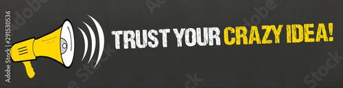 Photo Trust your crazy idea!