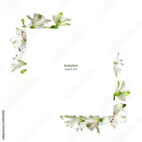 Fotografia White flowers. Floral background. Leaves. Lilies.