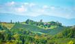 Weinberge in der Südsteiermark, Österreich, im Spätsommer