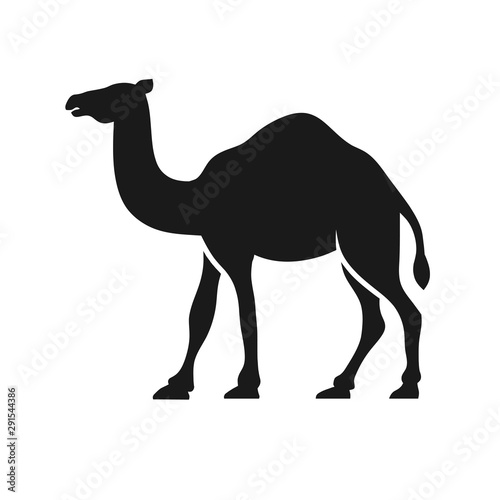 Camel Graphic Silhouette Logo Design vector Wallpaper Mural