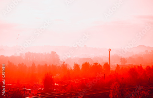 Foto auf AluDibond Rot Red autumn forest and mist in the morning. Seasonal background with copy space