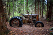 canvas print picture - Alter Traktor im Wald