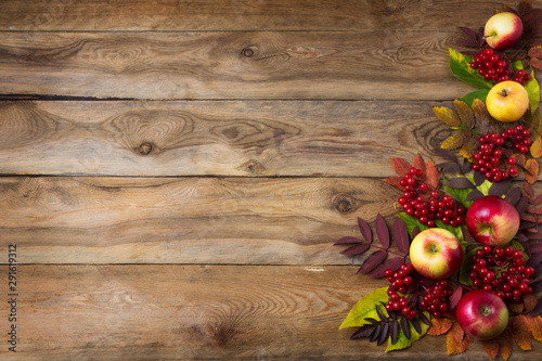 Obraz na plátně  Rustic fall background with red leaves and apples