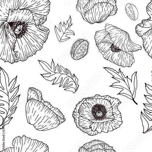 Vector seamless pattern with compositions of hand drawn leaves, flowers black poppys. Beautiful black and white endless background. Wall mural