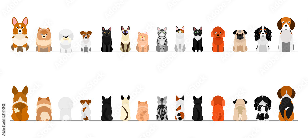 Fototapeta small dogs and cats border border set, full length, front and back