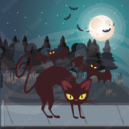 Fototapety, obrazy: halloween dark scene with black cat