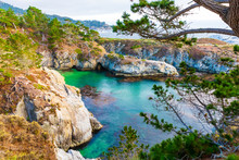 China's Cove In Point Lobos ...