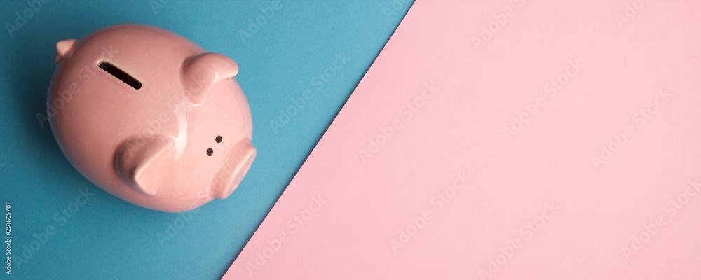 Fototapeta Piggy bank and dollar cash money. Business, finance, investment, saving and corruption concept.