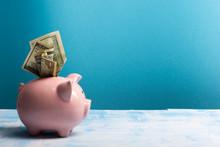 Piggy Bank And Dollar Cash Mon...
