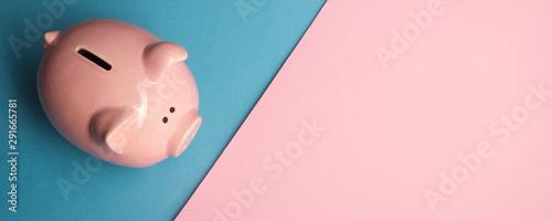 Fotografía  Piggy bank and dollar cash money