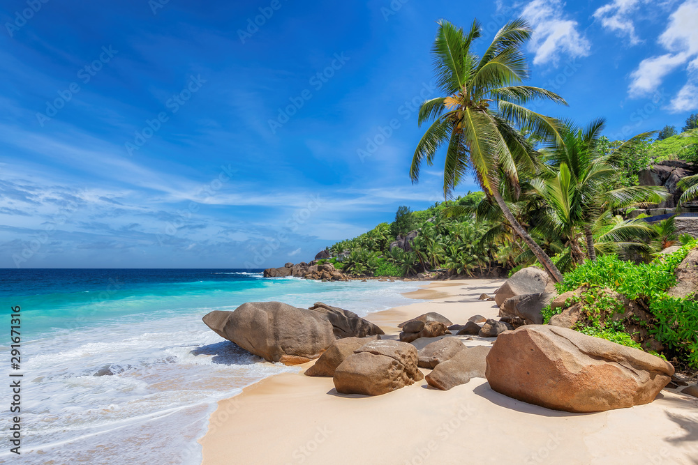 Fototapeta Exotic Sunny beach and coconut palms on Seychelles. Summer vacation and tropical beach concept.