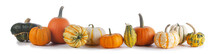 Assortiment Of Pumpkins On White
