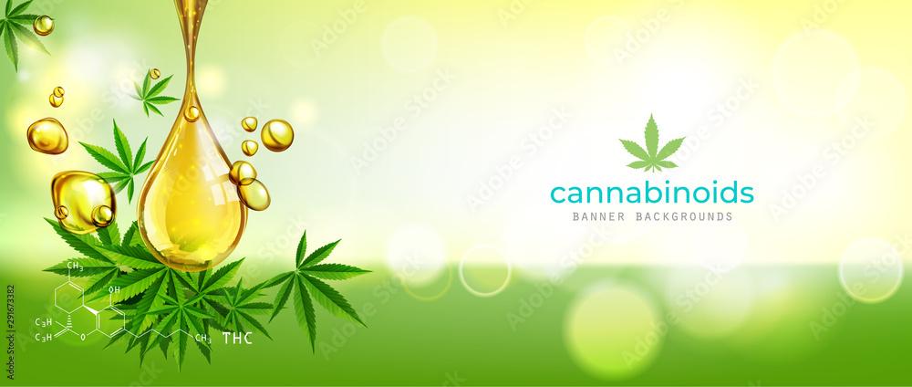 Fototapety, obrazy: green background. Cannabis marijuana in medical.