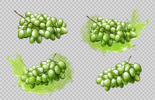 Realistic Grapes Bunches And Juice Splashes Set Isolated On Transparent Background, Green Berries Graphic Element For Natural Fruit Drink Advertising Or Package Design 3d Vector Illustration, Clip Art