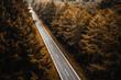 Gerade Straße durch dicht bewachsenen Wald in Nordrhein Westfalen Herbstmotiv