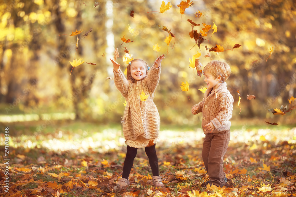 Fototapety, obrazy: Funny twins in autumn park