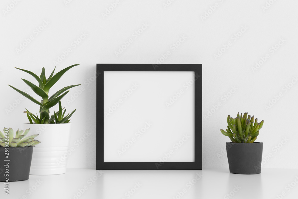Fototapeta Black square frame mockup with a various types of succulent plants on a white table.