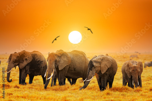 La pose en embrasure Elephant Artistic fantastic african sunset landscape. African elephants in Amboseli National Park. Kenya, Africa at a sunset.