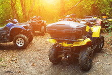 A Group Of ATVs In A Forest Co...