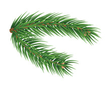 Fluffy Fir Tree Brunch Isolated On White Background. Merry Christmas And Happy New Year Decoration. Green Fir Tree Branch Vector Illustration. Fresh Conifer Plant Detailed 3d Rendering Element.