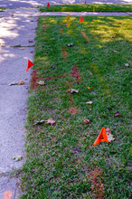 Phone And Gas Line Markings An...
